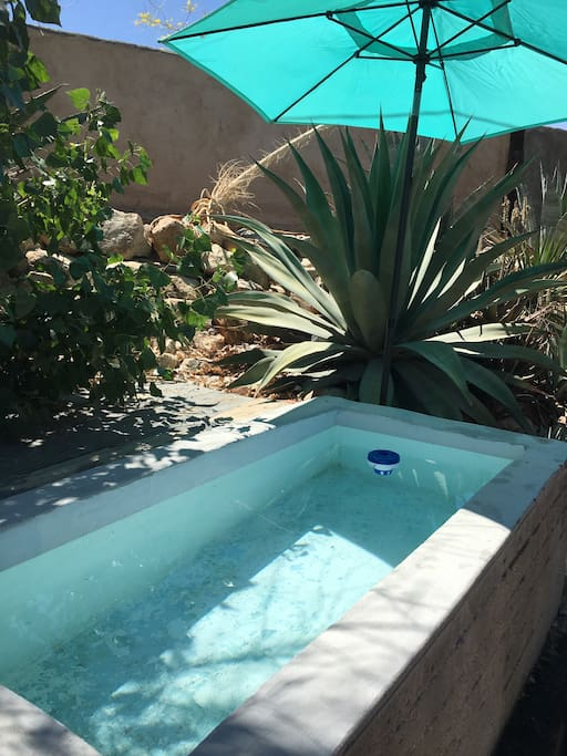 COLD plunge pool ... built for two