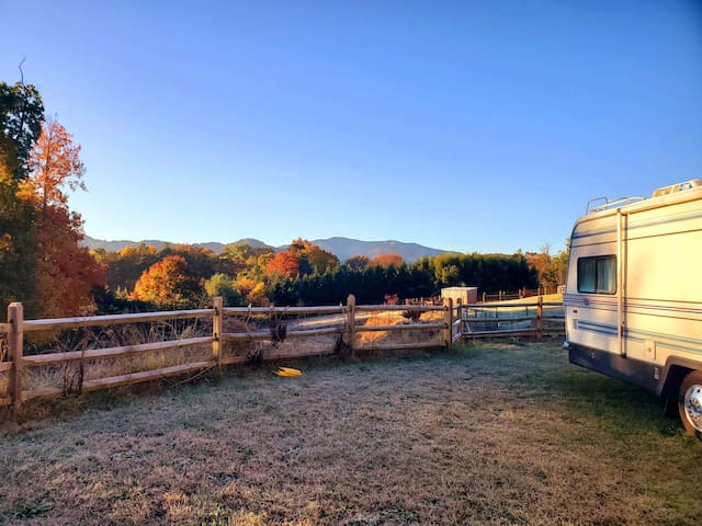 Animal Rescue and Hemp Farm RV sanctuary