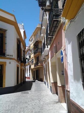 Happy House in Seville! Viriato12 Room 2F