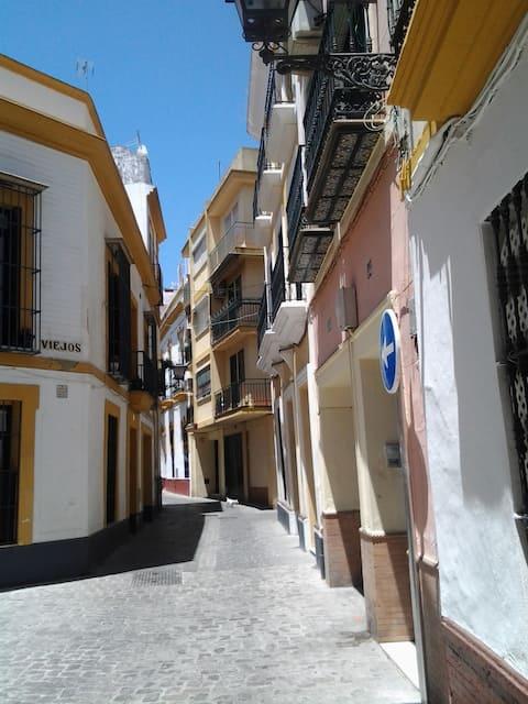 Happy House in Seville! Viriato12 Room Type F(2/2)