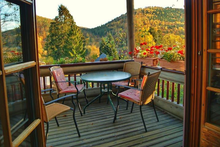 Villa Ecologica-comfort on Neckar near Heidelberg