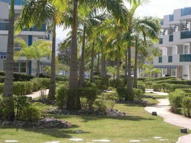 Paraíso caribeño frente a la playa! 1(one)bedroom