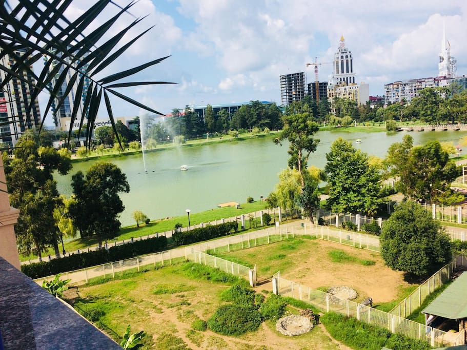 view from balcony - Batumi central park