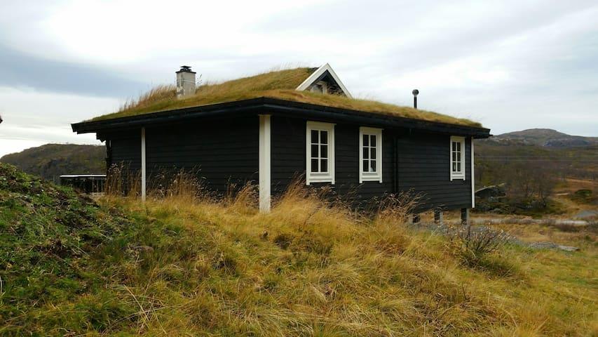 Mountain cabine Hedlebrekk 1.