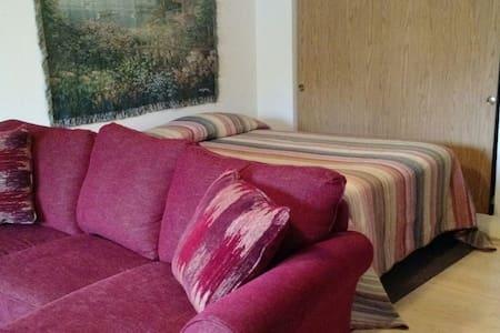 Master suite, private bath, sofa, queen bed, quiet - Tacoma - Maison