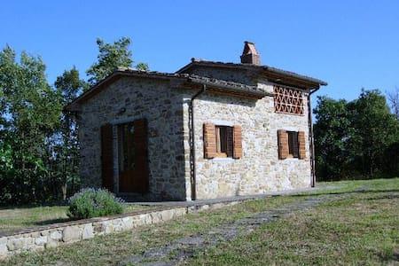 Il Cielo di Montemiliano - Monolocale con giardino - Monterchi - ห้องเพดาน