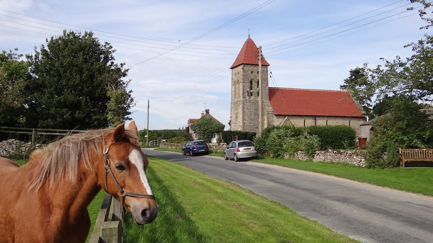 St Aidan's near Helmsley, York. - Helmsley - House