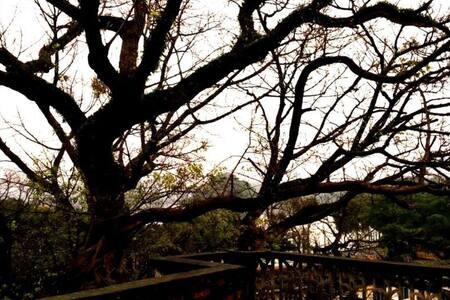 树院二房,可以看到湖光山色的洗手间,原木阁楼! - 肇庆市