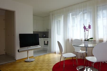 2-room apartment in the old town - Lucerne - Lägenhet
