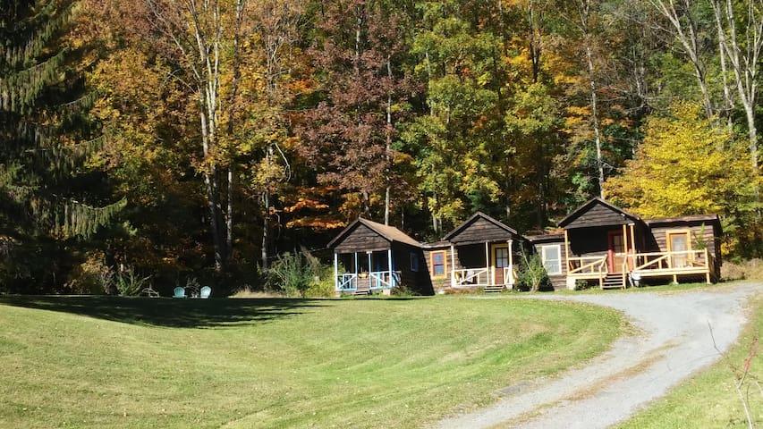 Simple, cozy cabin in the Central Catskills