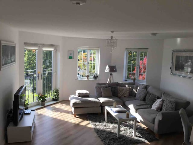 Lovely light and bright lounge that attracts the sunshine from early morning to late evening with corner sofa ,dining table super fast WiFi ,flat screen tv including amazon and Netflix and lots of information on what's happening in and around York.