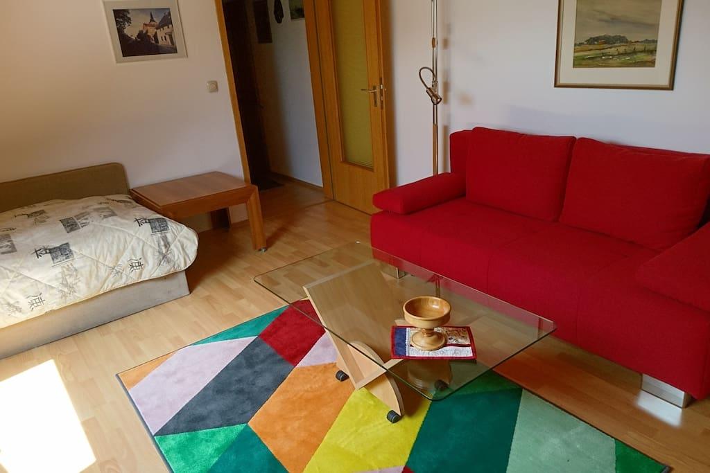 Wohn - Schlafzimmer mit Bett