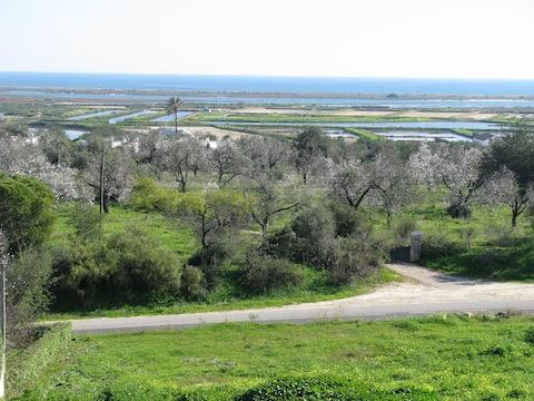 Tavira Apt with an Ocean View
