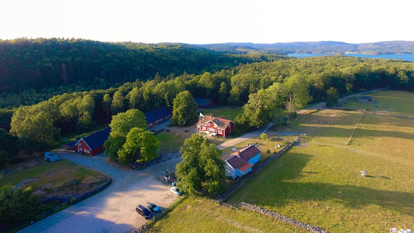 Farm stay incl goat yoga and farm activities