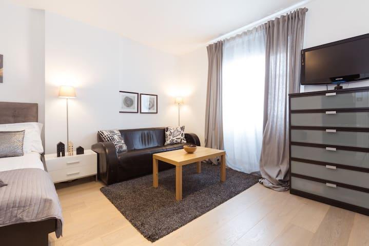 MINI 1 bedroom apartment  in South Kensington