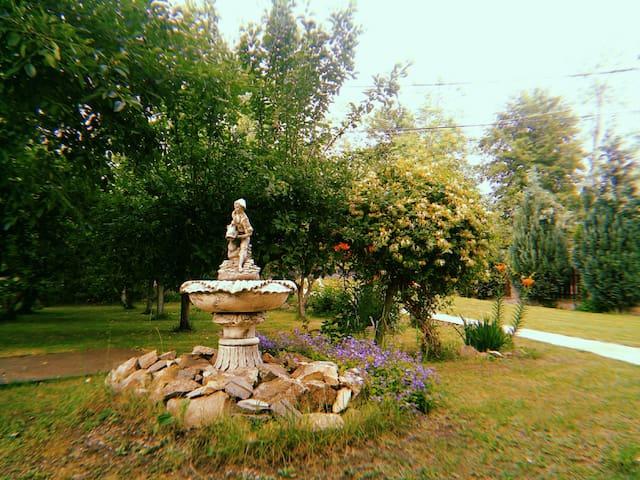 The greengarden house