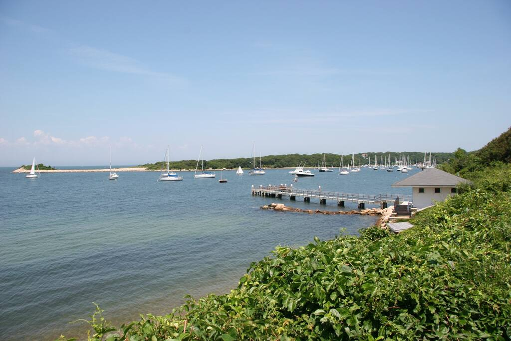 Quissett Harbor setting