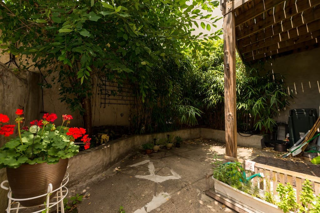 Private courtyard (spring photo)