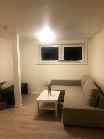 Nyoppusset leilighet med fantastisk utsikt!
