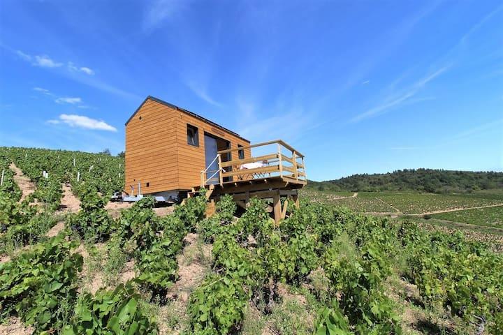 """Tiny House """" La cadole du Vigneron"""""""