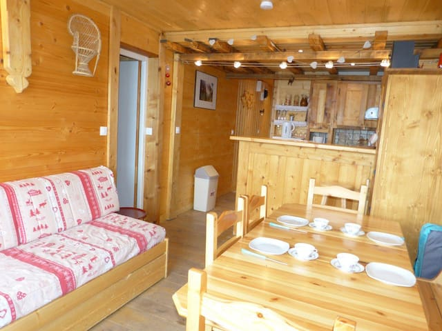 One bedroom comfort apartment with cabin.
