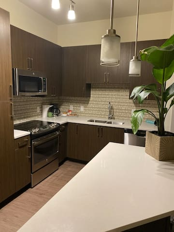 NEW DOWNTOWN LUXURIOUS APARTMENT
