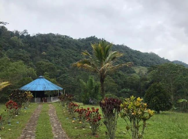 Reserva Lugar de Paz y Naturaleza