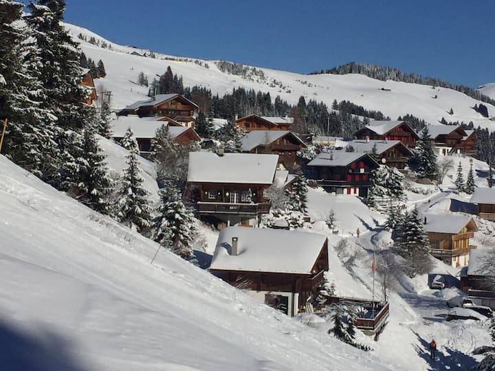 Ski I/O Les Portes du Soleil & astonishing views