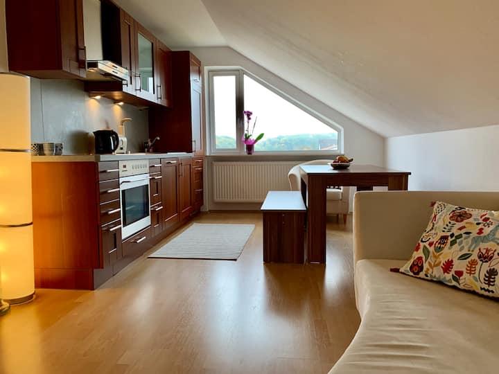 Tolle Dachgeschoss Wohnung! Darmstadt, Frankfurt