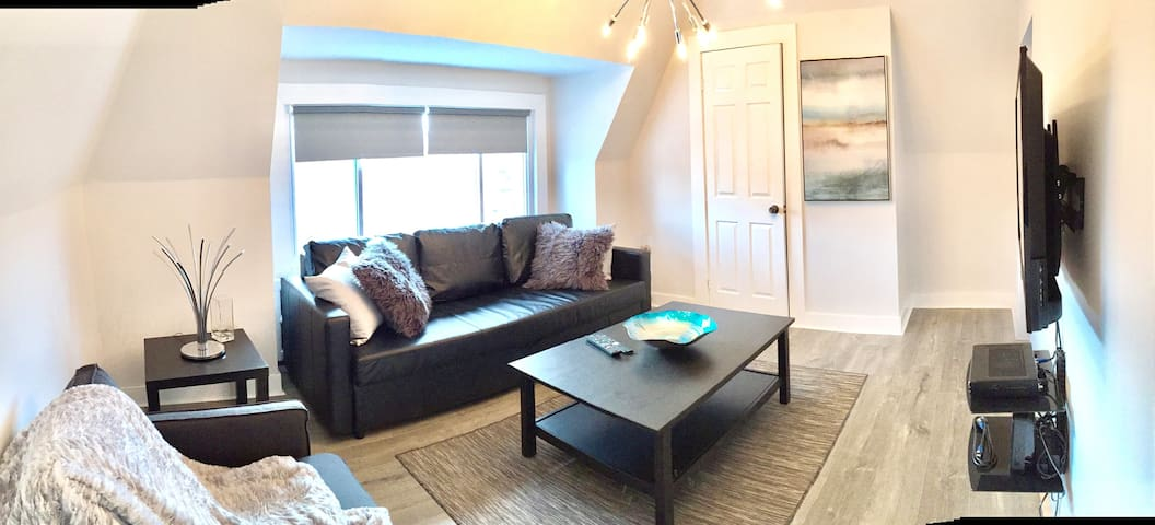 bright and spacious living room with pullout sofa