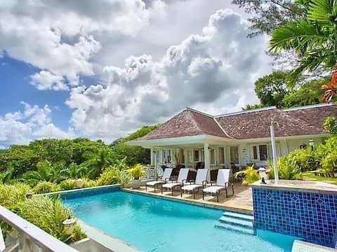 Gorgeous Light-Filled Villa w/ Pool & Ocean Views