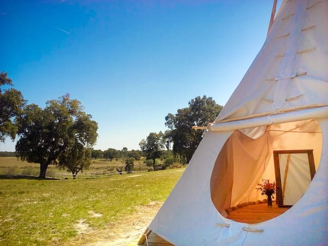 Direction South Glamping - Campsite with a soul - Montargil - Tipi