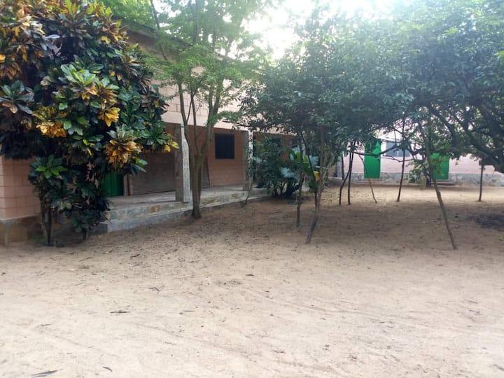 A la ferme BIO Amoussou