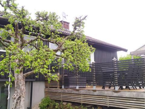 Hele villaen i nærheten av Borås Zoo