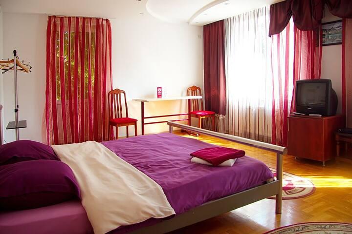 Room in the ViP Villa - Chisinau - Villa