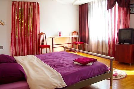 Room in the ViP Villa - Chișinău - Villa