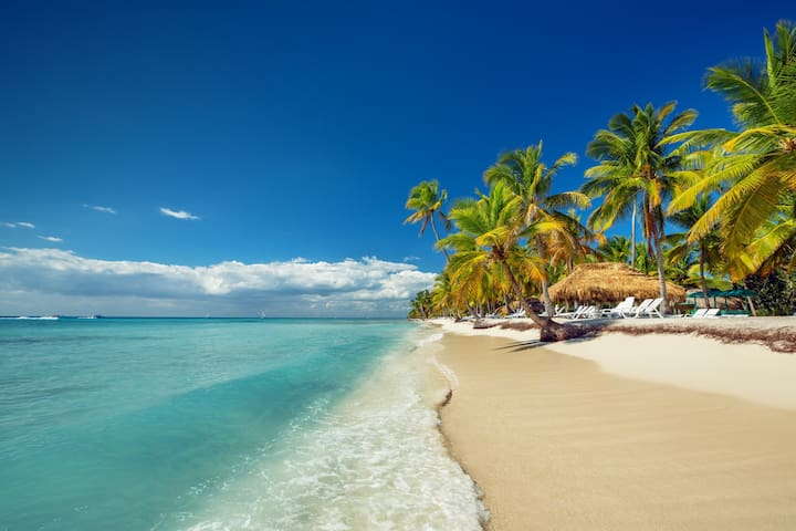 The Best Beach,  Palms, White sand - Fun and Joy