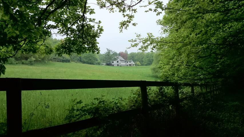 ruhiges Apartment auf Reiterhof idyllisch gelegen - Wetter (Ruhr)