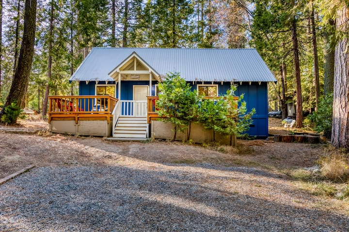 As seen on House Hunters! Renovated cabin w/bocce & cornhole - walk to town/lake