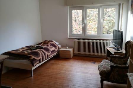 schönes Gästezimmer in Heidelberg - Heidelberg
