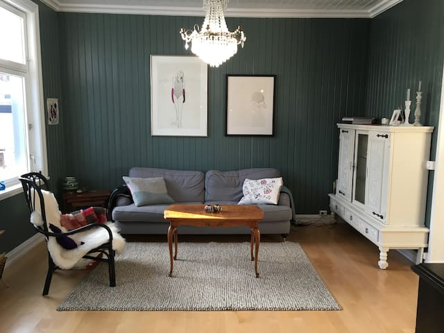 Spacious and central apartment - Hamar