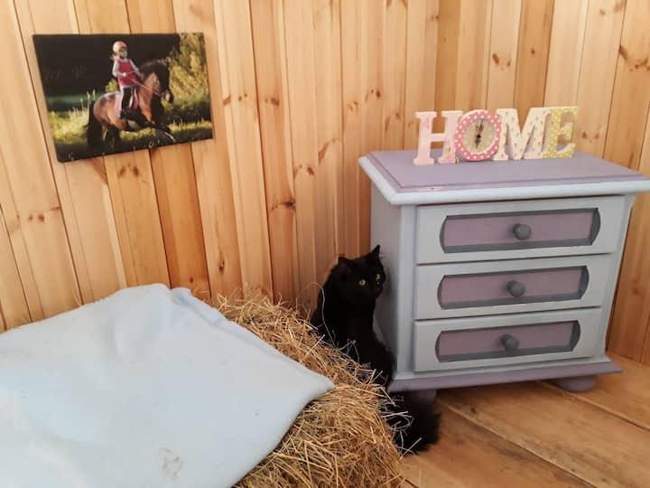 Heuboden-Lodge im Stall