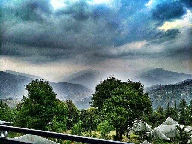 One Bedroom | Himalayan View | Apple Farm