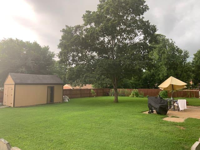 The backyard area.