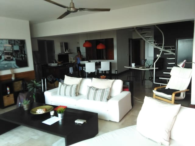 Ocean view Penthouse down town - Santo Domingo