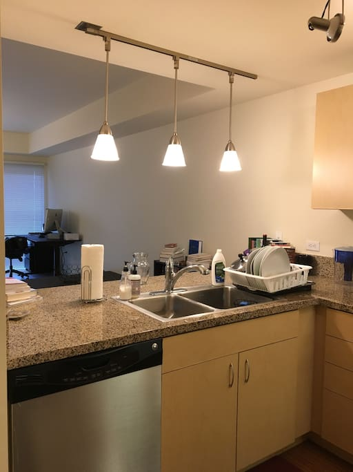 1 bedroom apartment in south waterfront apartments for