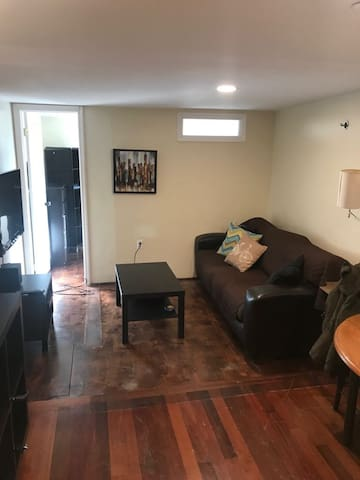 Lovely spacious 1 BR apartment in Williamsburg