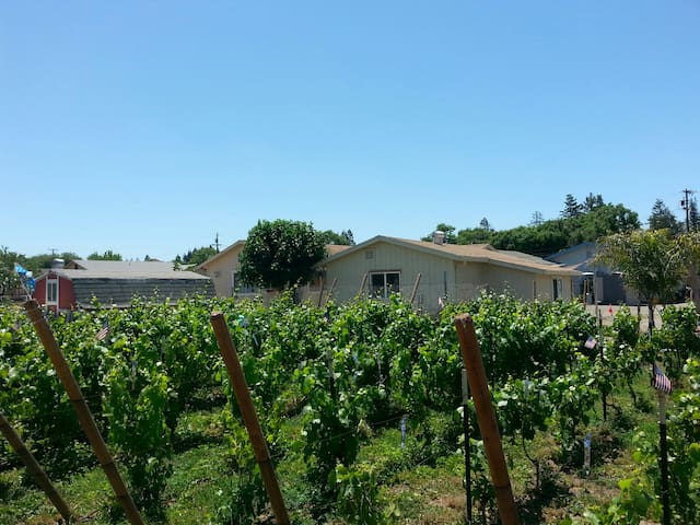 G & M LIVERMORE WINE COUNTRY GET AWAY #1 (Pets ok)