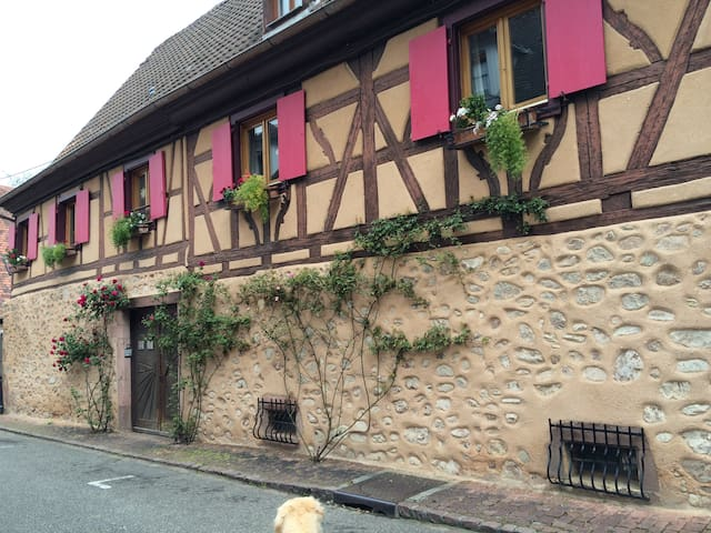 Cozy room in half-timbered Alsace house - Turckheim - Bed & Breakfast