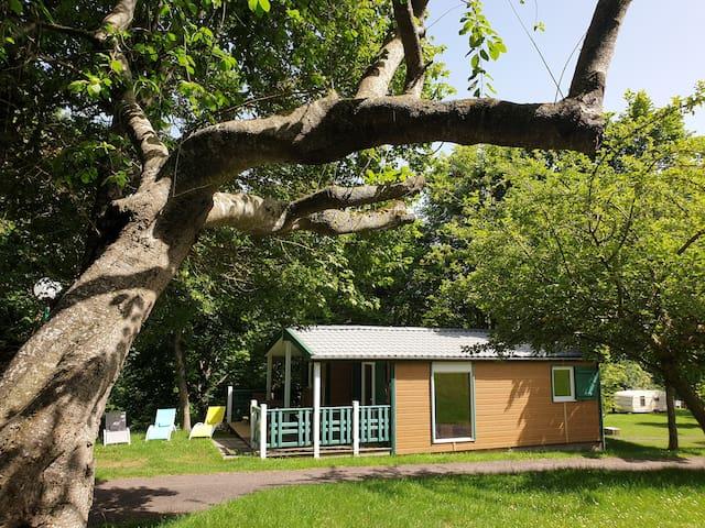 Bungalow Chalet PUY DE DOME 4/6 pers sur camping